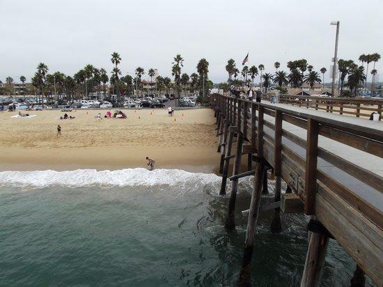 Balboa Pier Beach Newport Ca