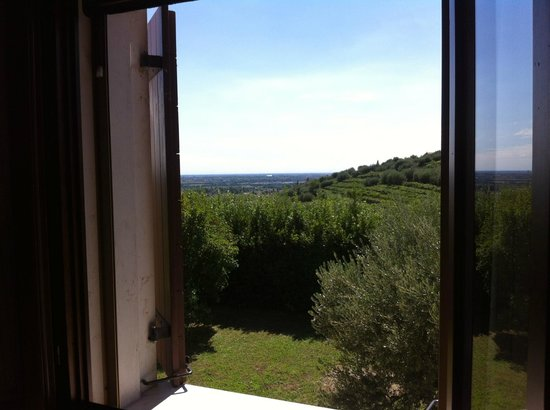 B & B Il Pettirosso: View from the room