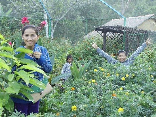 Kep Butterfly Farm : Not only a farm,but also a garden.