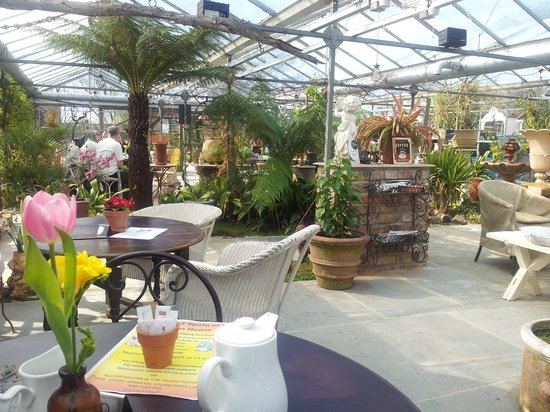 Ribchester, UK: The Glasshouse