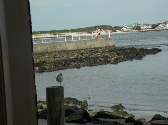 Oceanic Motel: looking out of our room door