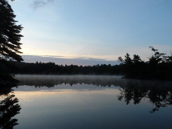 Free Spirit Adventures at Elmhirst's Resort : Just before dawn.