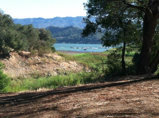 Lake Casitas: The view from our site
