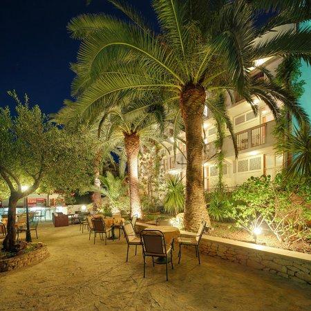 Hotel Villa Adriatica: Garden