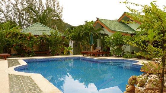 Paradise Home Resort: Blick auf Pool
