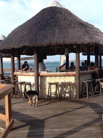 Augusta Bay Bahamas: Bay side bar