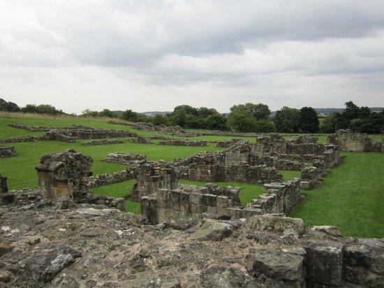 Byland Abbey: Monastic ruins