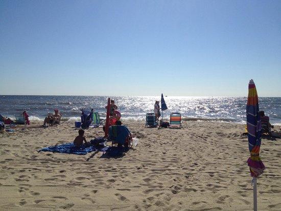 Seven Presidents Oceanfront Park: Clean Beach, I of IV