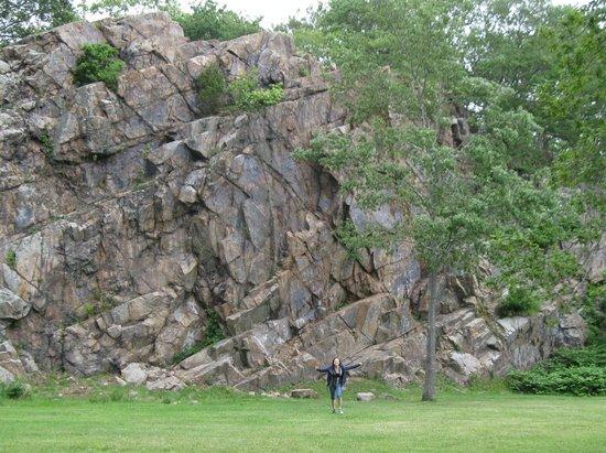 Ballard Park: climbing