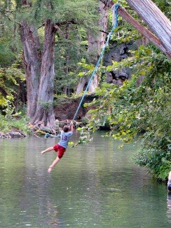Krause Springs Rope swing & Rope swing - Picture of Krause Springs Spicewood - TripAdvisor