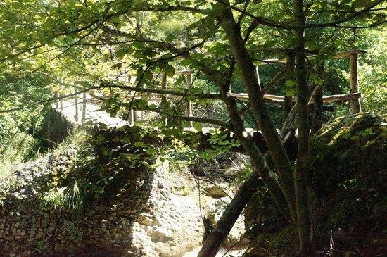 Riserva Naturale Statale Valle dell'Orfento: Valle dell'Orfento