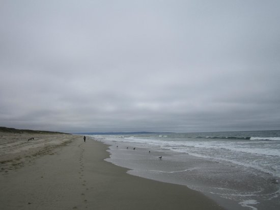 Monterey Bay Equestrian Center: Beautiful Beach