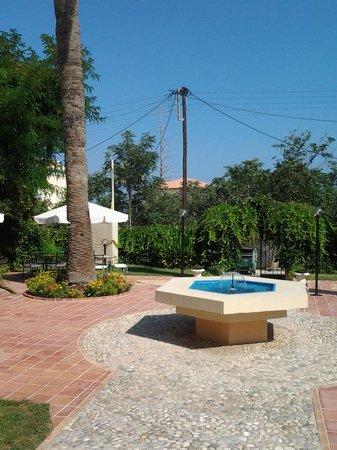 Halepa Hotel: Garden