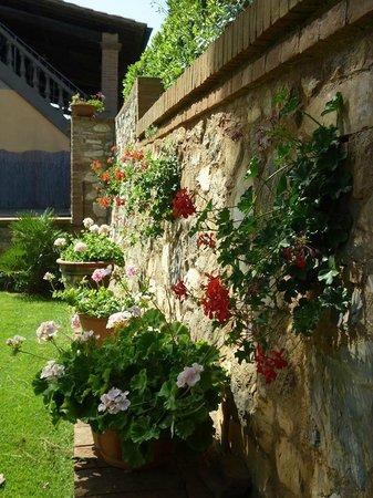 Residence Il Castagno Toscana: la reception