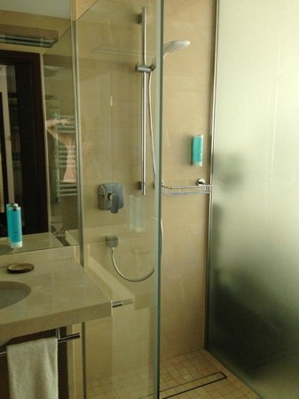 Our room, the shower and frosted wall