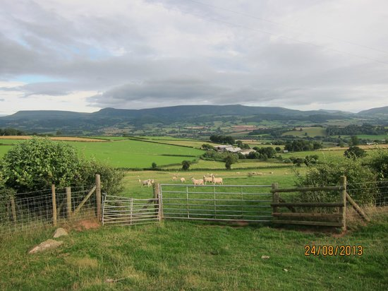 Upper Middle Road Farm: On a walk in the local area