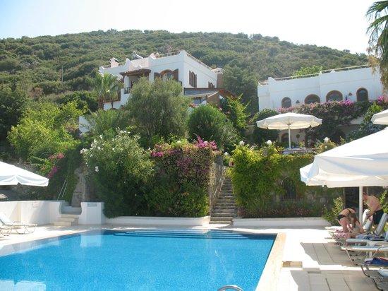 Lavanta Hotel: The beautiful pool and hotel
