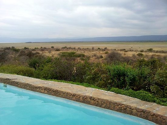 Manyara Wildlife Safari Camp: Pool