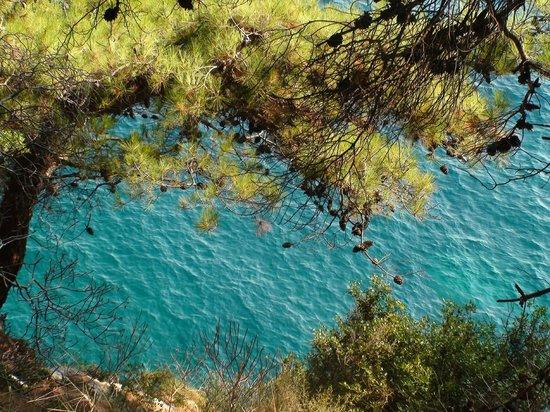 Monte Casa Spa & Wellness : Виды с горной тропы