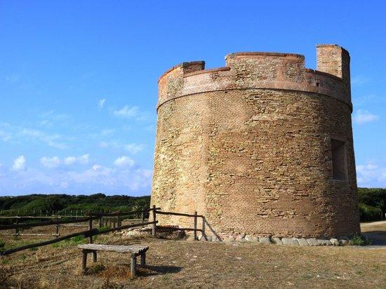 Anzio, Italia: Tor Caldara - Torre