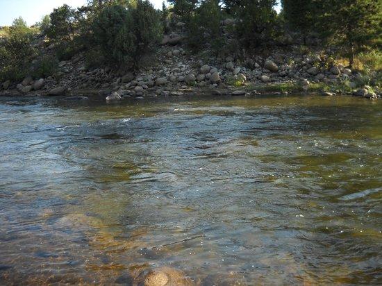 Mountain River Inn Bed & Breakfast : Arkansas River below the B&B