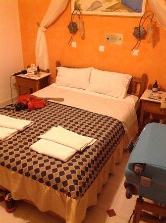 Hotel Golden Star : room