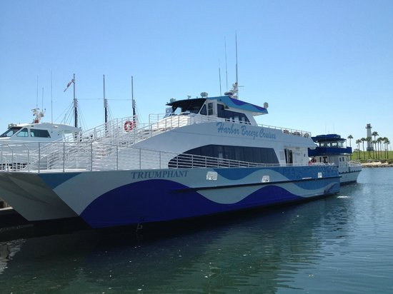 2SeeWhales Harbor Breeze Cruises : The able vessel!