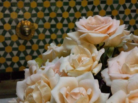 Riad Samsara: roses in the fountain