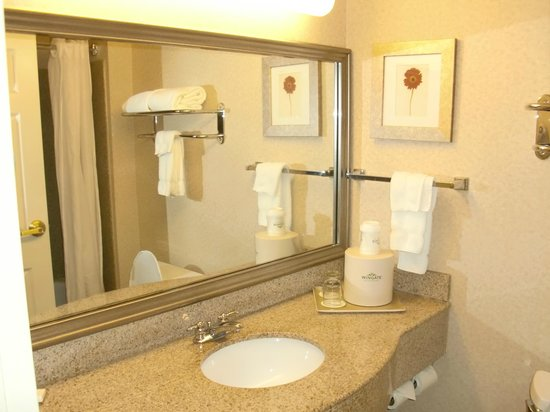 Wingate by Wyndham Chesapeake: Clean Bathroom