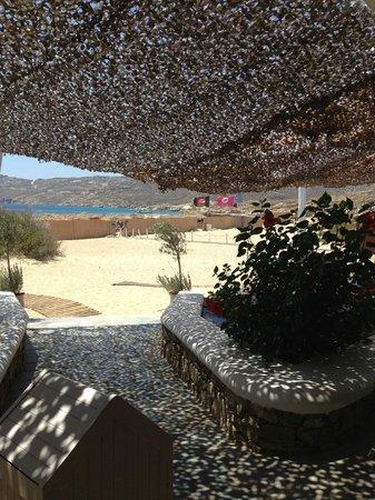 Elia Beach Restaurant: DETTAGLIO INGRESSO