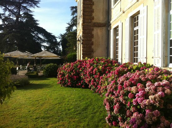 Chateau de Curzay: Terrasse and flowers