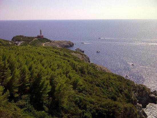 Fortini Coastal Walk: Il faro di Punta Carena dal sentiero