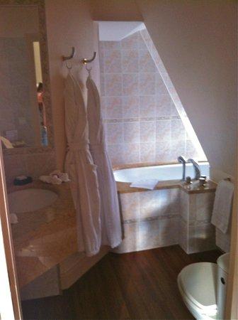 Chateau de Curzay: Bathroom