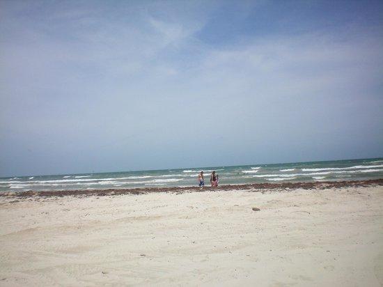The Beach Lodge: by the beach