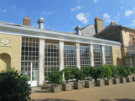 Belmont House and Gardens: The Orangery