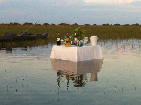 Camp Okavango: Water Bar on the Delta