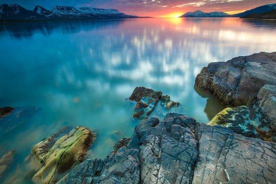 Gistiheimilid og Parhusaleigan: You can take a walk along the sea at Svalbarðseyri.