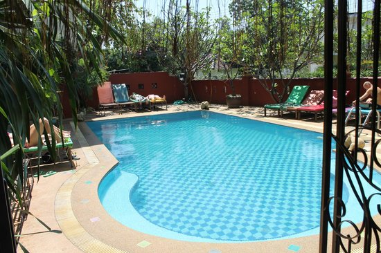 Chiang Mai Thai House: Pool