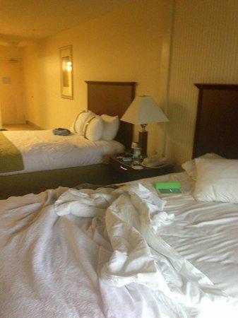 Holiday Inn Santa Maria: NELLA MATRIMONIALE CI SONO DUE LETTI A UNA PIAZZA E MEZA