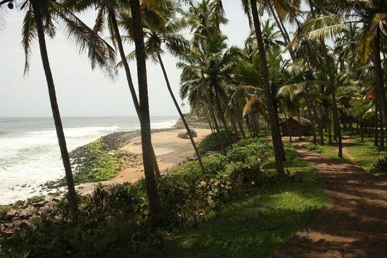 Mektoub: Odayam Beach