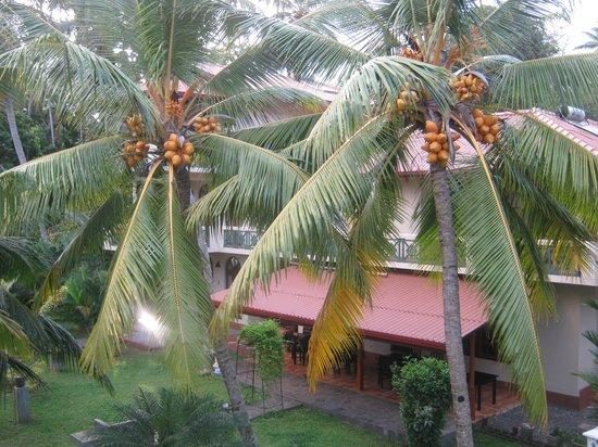 Shangri-Lanka Villa : View from balcony