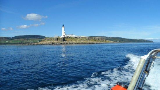 Ocean Breeze Rib Tours: Pladda lighthouse