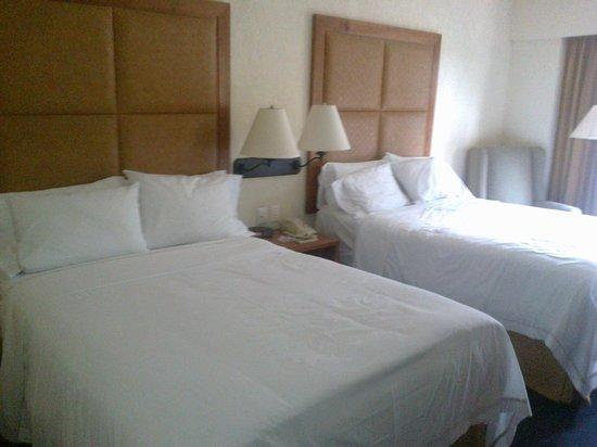 Holiday Inn Express Centro Historico Oaxaca: habitacion