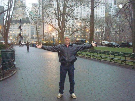 The Pierre, A Taj Hotel, New York: Central Park, em frente ao Hotel