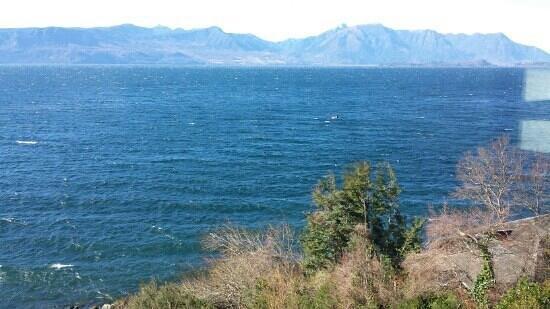 Villarrica Park Lake Hotel : vista habitacion 214