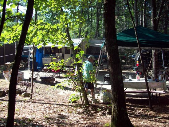 Woodmore Campground: Nicely wooded area