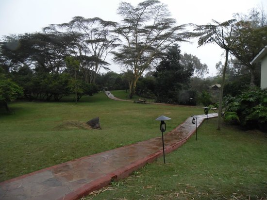 Wildebeest Eco Camp: beautiful grounds after a rain