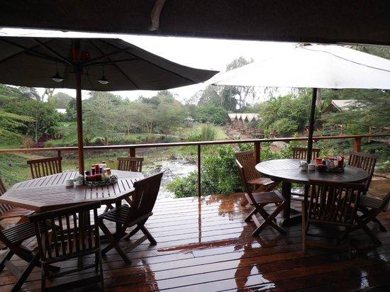 Wildebeest Eco Camp: very nice dining area
