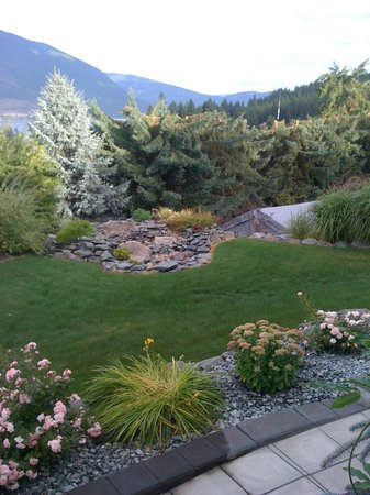Destination Spa Bed & Breakfast : This is the stunning backyard!!!