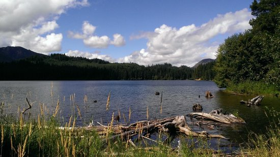 Lake Easton Resort Updated 2017 Campground Reviews Wa